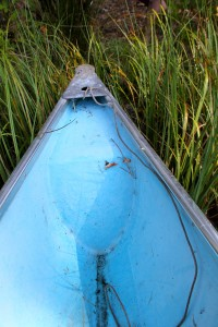We stayed at a small cabin  and enjoyed exploring the small lake in this canoe. It was inspiring to gently paddle through the colorful water iillies.